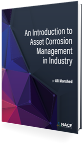 Picture of An Introduction to Corrosion Management in Industry (E-book)